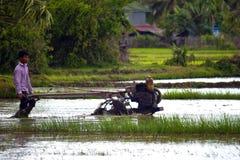 Charrue rurale sa rizière Photographie stock