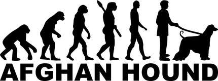 Chart Afgański ewoluci słowo ilustracja wektor