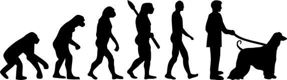 Chart Afgański ewolucja ilustracja wektor