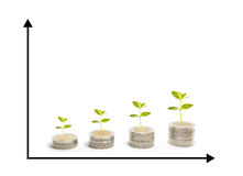 Chart of growth plants. Investment with chart of growth plants on coins Stock Photography