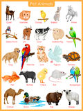 Chart of pet animals Royalty Free Stock Photo