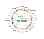 Chart for soaking grains,legumes,nuts and seeds Royalty Free Stock Image