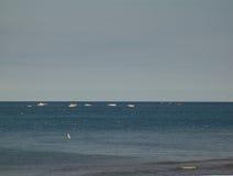 Charter boats. On lake michigan, fishing for salmon royalty free stock photo