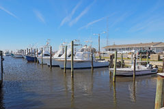 Charter fishing boats at Oregon Inlet Fishing Center. Charter fishing boats and store for excursions into the waters of Pamlico Sound and the Atlantic Ocean at stock photography