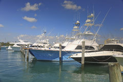 Charter Fishing Boats, West Palm Beach, Florida, USA. Black, blue and white charter fishing boats at a marina, West Palm Beach, Florida, USA. Taken on a lovely stock images