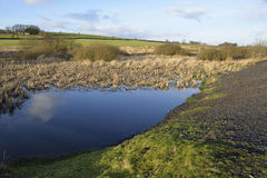 Charterhouse Lead Mine Ponds Royalty Free Stock Images