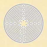 chartres labyrint Royaltyfri Fotografi