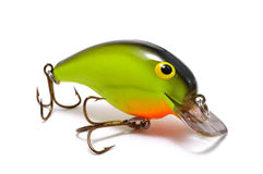Chartreuse Crankbait with Orange Belly Royalty Free Stock Photos