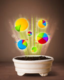 Charts coming out from flowerpot. Glowing pie charts coming out from flowerpot royalty free stock photo