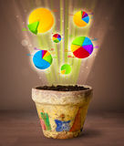 Charts coming out from flowerpot. Glowing pie charts coming out from flowerpot stock photography