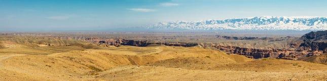 Charyn峡谷全景  库存照片