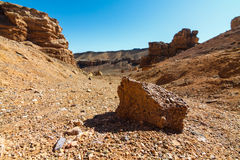Charyn Canyon Royalty Free Stock Photos