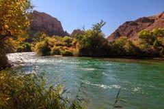 Charyn rzeka Zdjęcia Stock