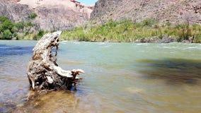 Charyncanion in Kasachstan van Oever van het meer royalty-vrije stock fotografie