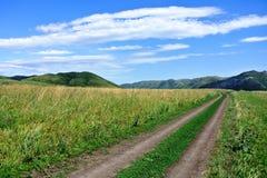 Charysh område Arkivbild