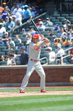 Chase Utley Royalty Free Stock Images