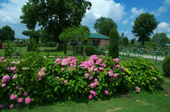 Chashmeshahi Garden Landscape in Srinagar-8. A beautiful scene of a lush green trees in a Kashmir with lots of flowers and trees Stock Photography