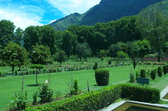 Chashmeshahi Garden Landscape in Srinagar-11. A beautiful scene of a lush green trees with plants in a garden in Kashmir Royalty Free Stock Image