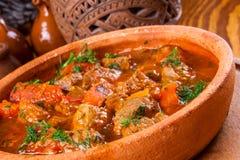 Chashushuli - guisado picante de la carne con las verduras Fotos de archivo libres de regalías