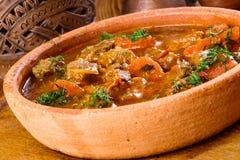 Chashushuli - ragoût épicé de viande avec des légumes Image stock