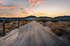Chasing Desert Sunset Royalty Free Stock Image