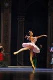 Chasing the dream-The Ballet  Nutcracker Stock Images