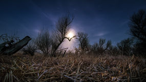 Chasing the moon - night full moon landscape Stock Image