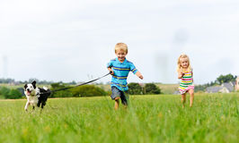 Chasing my brother and the dog in the field Royalty Free Stock Image