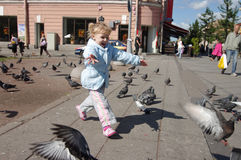 Chasing pigeons. Cute young girl chasing pigeons in a city square royalty free stock photo