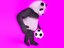 Chasing a soccer ball on foot on purple background. touching cute panda soccer player.  juggling ball bear. Stock Images