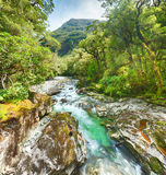 The Chasm. (Fiordland, South Island, New Zealand Stock Images