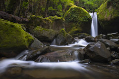 Chasm Falls. The beautiful Chasm Falls, located in Meander Valley in the forest and wilderness of Tasmania`s north west. This milky effect is achieved using a Stock Photos
