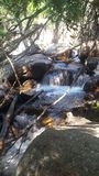 Chasm falls. In Rocky Mountain National Park Royalty Free Stock Image