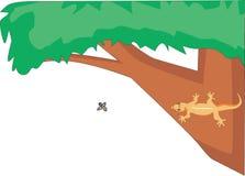 Chasse à lézard pour des insectes Illustration Libre de Droits