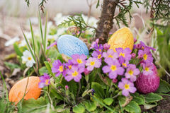 Chasse à Pâques Photos libres de droits