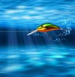 Chasse colorée d'attrait sous-marine Photo libre de droits