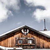 Chasse d'andouillers de forêt de carlingue de dolomites d'hiver Photos libres de droits