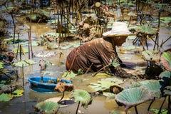 Chasse d'escargot Image libre de droits