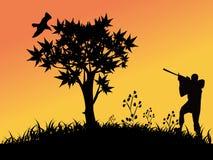 Chasse d'oiseau Photo libre de droits