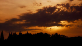 Chasse du Sun Photographie stock libre de droits