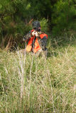 Chasseur - chasse - sportif Photos stock