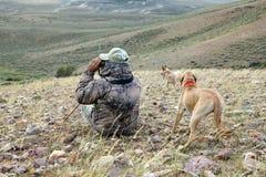 Chasseur et chiens de camouflage balayant le paysage aride photographie stock