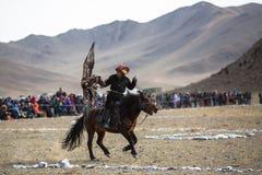 Chasseur kazakh aux lièvres avec l'aigle d'or - Berkutchi, dans les collines de désert de la Mongolie occidentale image libre de droits