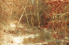 Chasseur marchant sur la rivière d'hiver Photos libres de droits