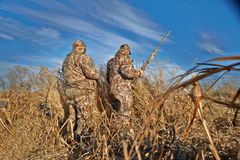 Chasseurs avec des pistolets se préparant à la chasse d'oiseau photos stock