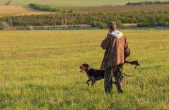 Chasseurs avec une arme à feu et un drathaar allemand Chasse de pigeon avec des chiens S image stock