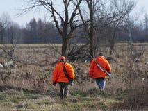 Chasseurs de cerfs communs images libres de droits