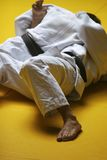 Chasseurs de judo photo stock