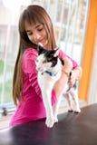 Chat agité avec son propriétaire à la clinique de vétérinaire photos stock