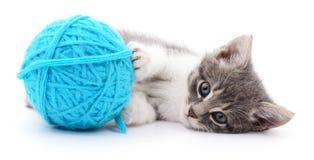 Chat avec la boule du fil Image stock